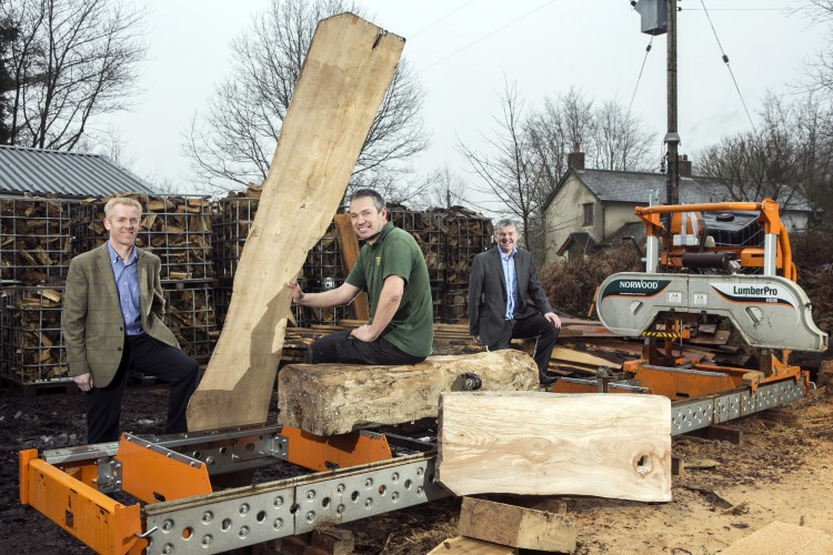 Wentwood Timber branches out